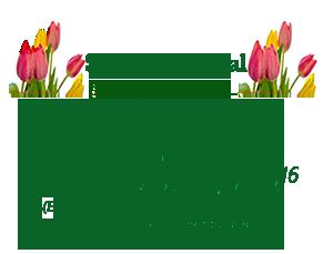 2016 Spring Special